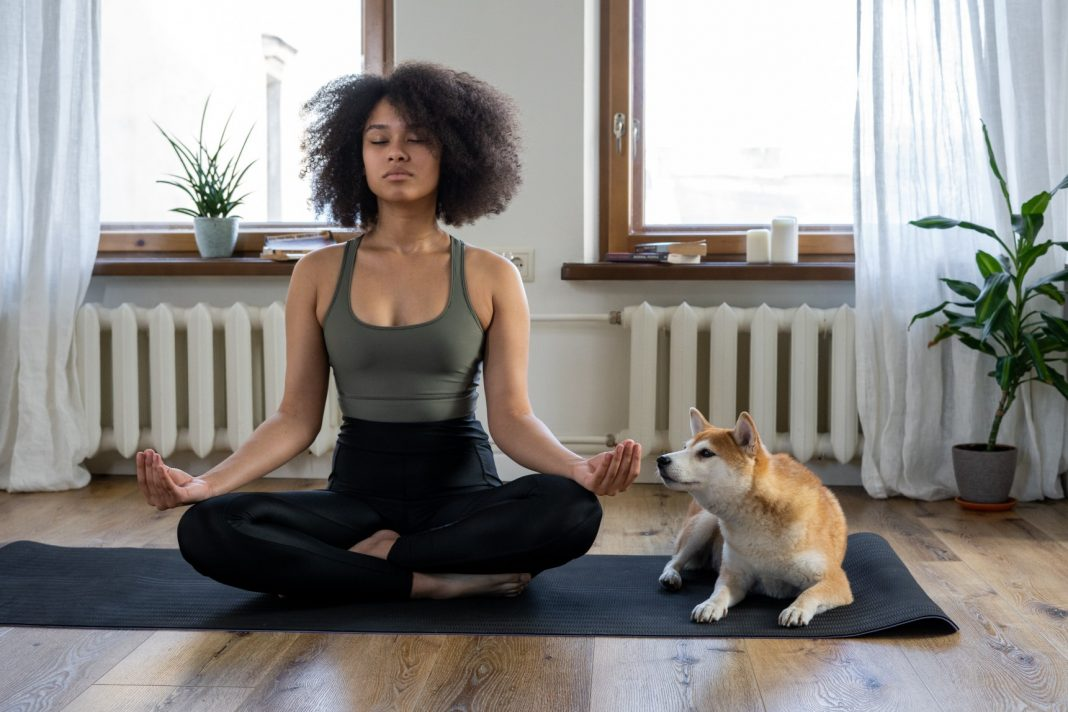 Interrupted Meditation Russell Herbert Jack of Southland Reveals How to Recover Your Mindfulness